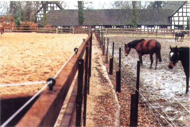 T&F Golpla Equiground® paardenbak voor en na
