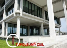 T&F Tupoleum® PLUS